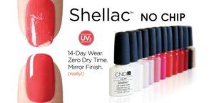 shellac web